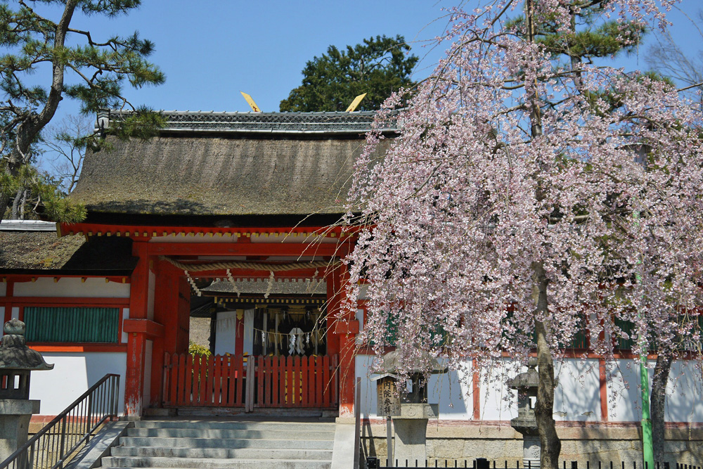 吉田神社節分祭りイメージ画像